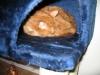 blandet-kat-zoo-169-small